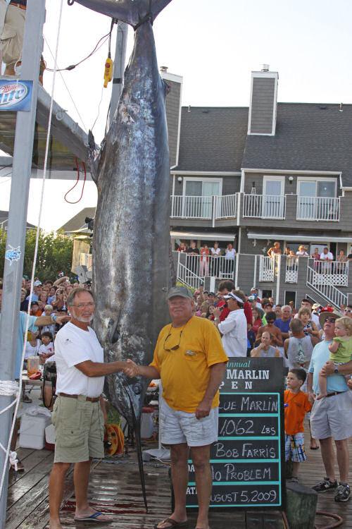 08/07/2009   Massive Blue Breaks Md  Record   News Ocean City MD