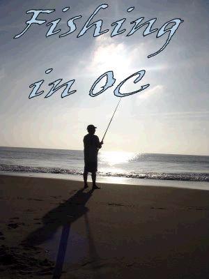 Fishing In OC
