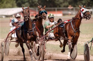Live Racing Set to Return to Ocean Downs