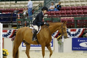 Worcester Prep Senior, Hannah Showell, Ties For Grand Champion At Capital Challenge Horse Show