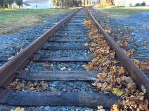 Early Excursion Train Study Balances Potential With Infrastructure Needs