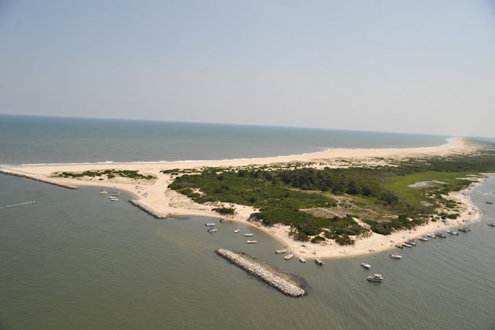 02/11/2015 | Assateague Island Marking 50 Years As National Park; Island  Almost Developed Several Times In Past | News Ocean City MD