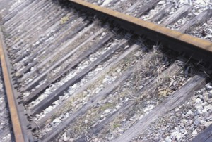 Excursion Train Report To Detail Expenses To Improve Railroad Track