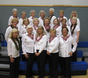 Ocean Pines Line Dancers Perform Two Christmas Dances