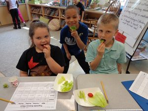 OC Elementary Second Grade Students Try Vegetables