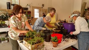Worcester County Garden Club Holds Annual Plant Auction And Sale