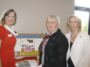 Daughters Of The American Revolution Gather For MD State Society's Fall Forum