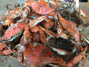Berlin To Host First-Ever Main Street Crab Feast