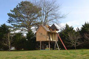 Survey Needed To Determine Treehouse's Future
