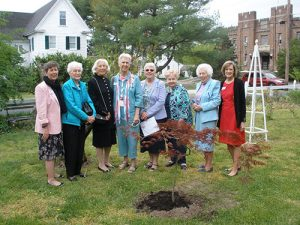 Daughters Of The American Revolution Plant Japanese Red Maple On Costen House Museum Grounds