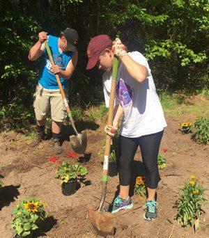 Salisbury University Students Plant Pollinator Gardens