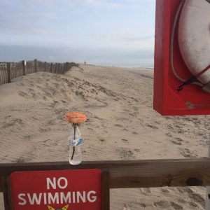 Two Drown At Assateague, Dozens Rescued In Ocean City