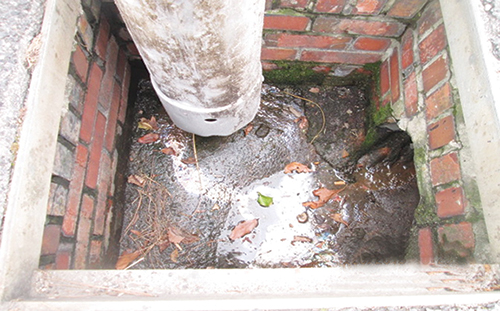 After Eye-Opening Stage Of Storm Drain Cleaning, Much More To Be Done