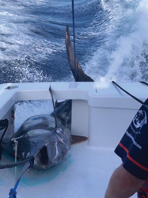 OC-Based Boat Wins Big Rock With 914-Pounder