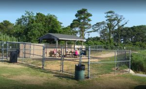 Creative Solution Could Expand Ocean City's Dog Park