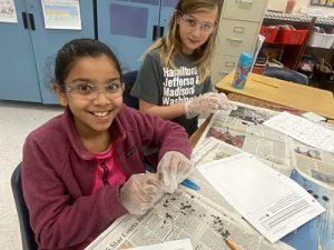 Berlin Intermediate Students Dissect Owl Pellets