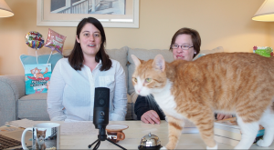 Pip The Beach Cat Launches Online Morning Show