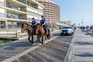Police Horses Harassed During Fight; Mount Tucker Punched Multiple Times