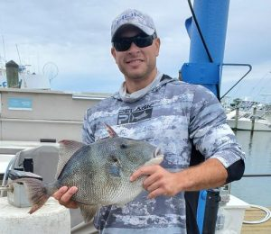 New State Record Triggerfish Caught