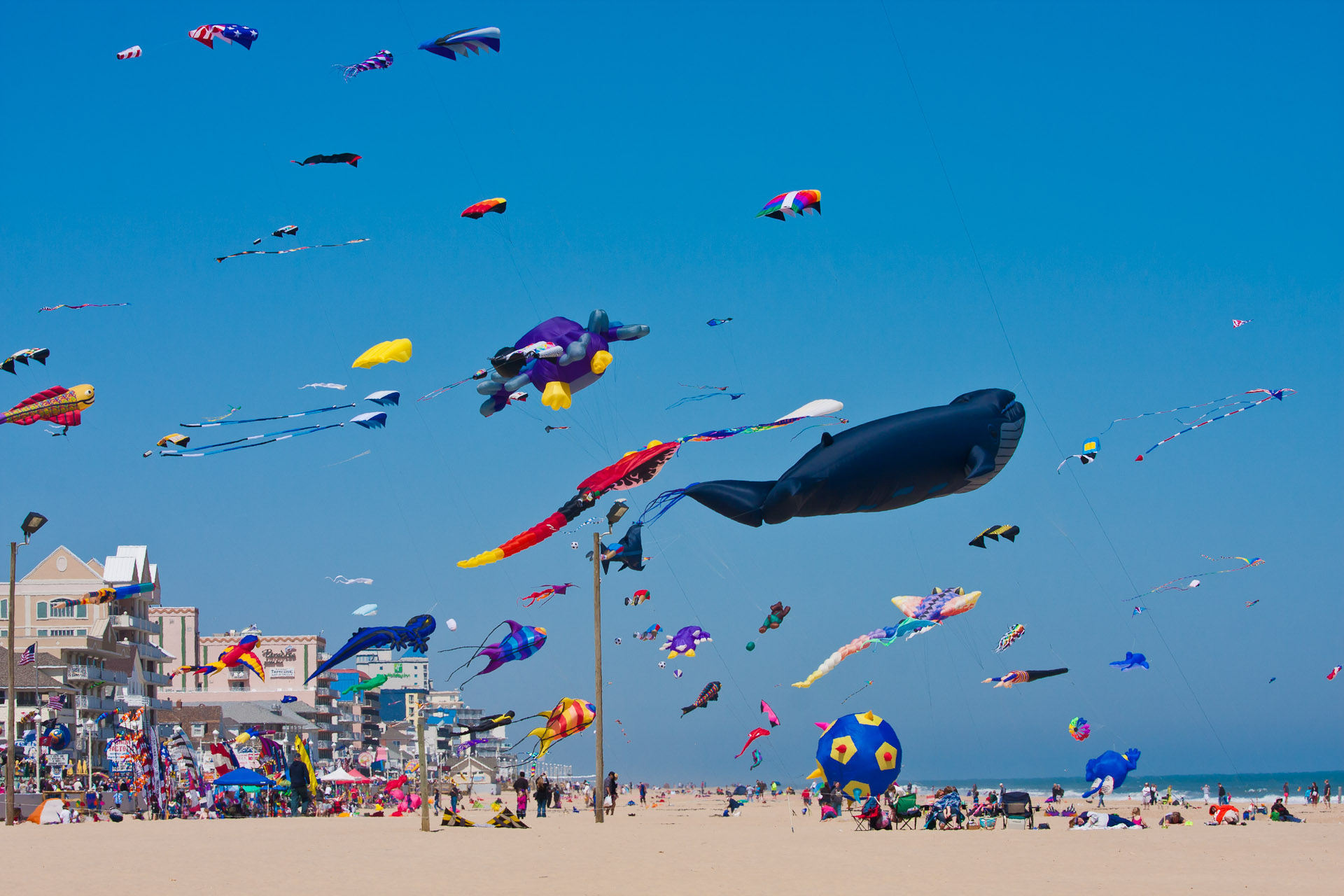 Annual Kite Expo Set For Ocean City This Weekend