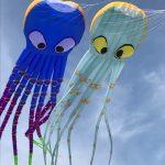 1-kite2-150x150.jpg