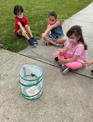 OC Elementary 2nd Graders Release Butterflies