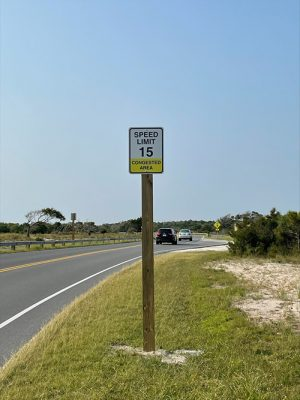 Assateague Institutes 15 MPH Speed Limit In Congested Areas