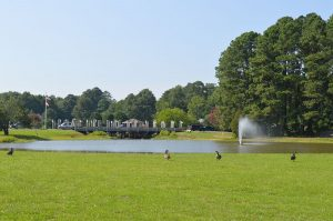 Ocean Pines Evaluating Turf Grass For Geese Control Measure